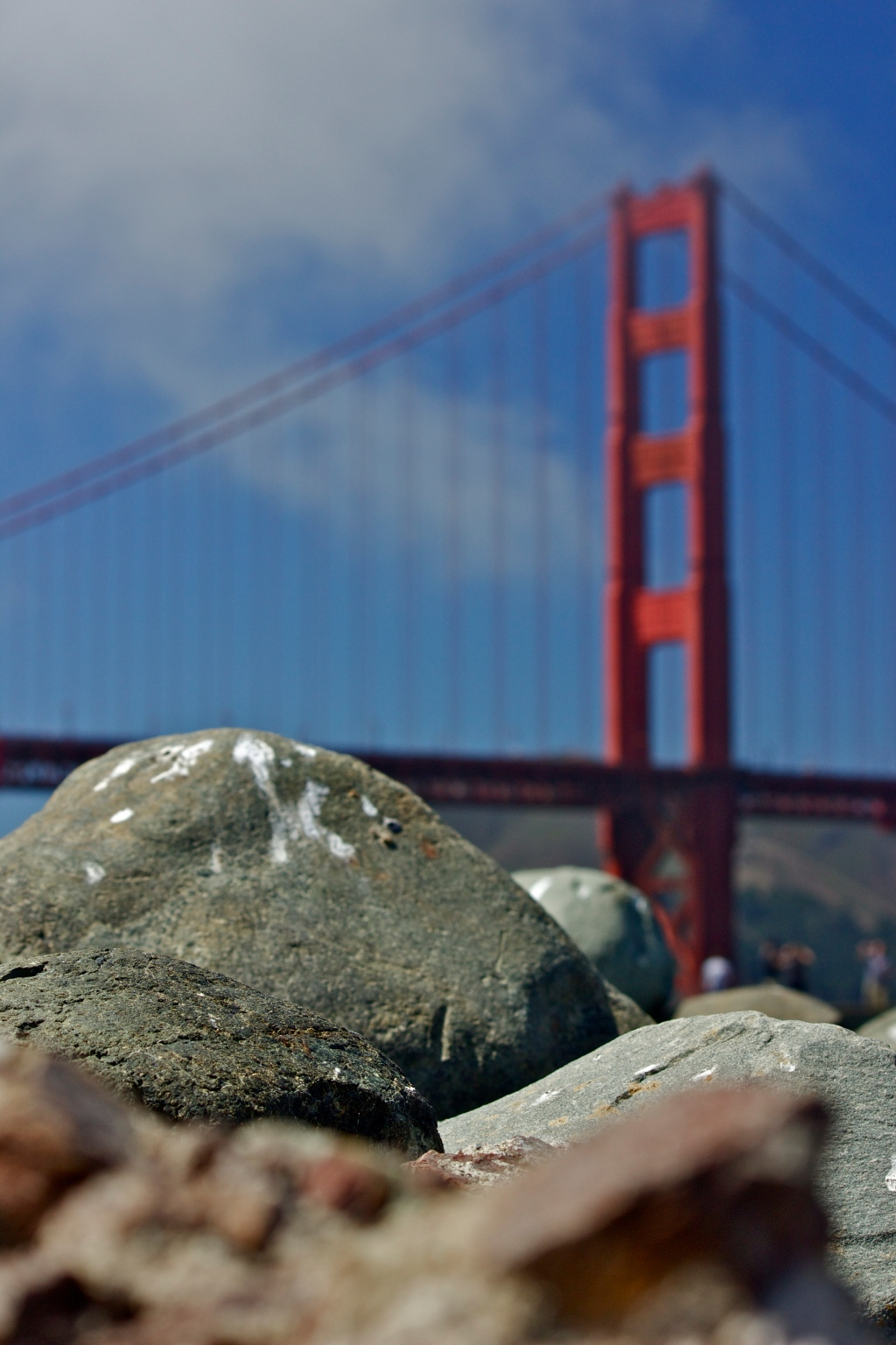Working toward the shallow DOF with my 55-250 canon lens. San Fran being 75 degrees and a wind-blown sunny made no part of me miss Forget-icut...errrr I mean Connecticut